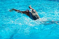 Female Swimmer Swimming Butterfly