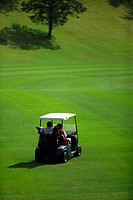Rear view of two golfers sitting in a golf cart