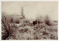 A photograph of two cows, a man and a boy in a frost covered field, taken by Colonel Joseph Gale (c 1835-1906) in about 1890. Trees and bushes are hea...