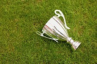 Trophy on football pitch