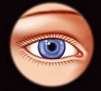 EYE, DRAWING<BR>Illustration of a frontal view of a woman´s eye with blue iris, pupil and eyelids.