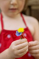 Young girl holding wildflowers (thumbnail)