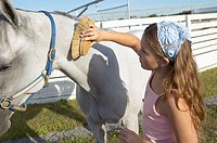 Girl brushing a horse (thumbnail)