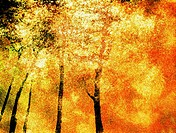 Abstract image of a park in autumn