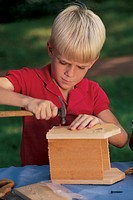 Young boy building birdhouse.