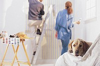 Couple painting and dog, portrait.