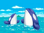 Illustration of Whales