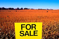 For sale sign on farmland - soy bean field & blue sky in the background, Gaithersburg, MD
