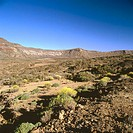Cañadas del Teide National Park, Tenerife. Canary Islands, Spain