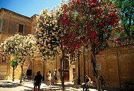 Tourists at square court, Mdina, Malta