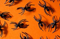 Halloween spiders