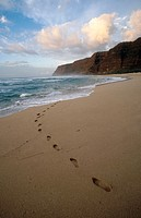 Coast of Na Pali. Tracks on the beach. Kauai island. Hawaii