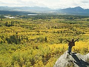 Canada, Alberta, mature man overlooking forest, arms raised, autumn