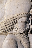 Guardians procession. Tripylon. Persepolis. Iran.