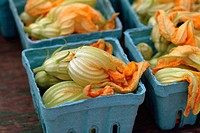 Union Square Squash blossom
