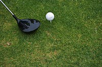 Still life of golf club and ball on the green