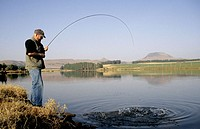 Fly fishing for trout, angler fighting large rainbow trout, KwaZulu-Natal, South Africa