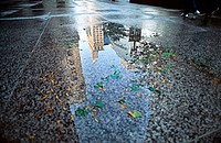 Chicago, skyscrapers reflecting in a puddle