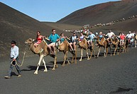 Tourists on camels. Timanfaya National Park. Lanzarote. Canary Islands. Spain