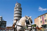 Leaning Tower with Horse and Carriage, Pisa, Tuscany, Italy