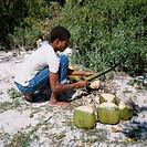 Cutting Coconuts Barbuda