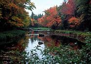 Mersey River Kejimkujik National Park Nova Scotia, Canada