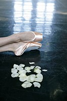 Feet of a female ballet dancer wearing ballet shoes lying next to rose petals on the floor