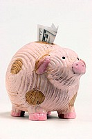 Close-up of a piggy bank with money in its slot