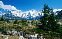 Eiger, Moench, Jungfrau. Barnies Oberland. Bern, Spring. Alps. Switzerland