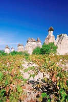 Turkey, Cappadocia, Pasabaglari, Chimneys in a landscape