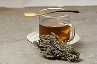 Glas of herbal tea with mugwort