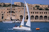 malta, sailing boats near the coast
