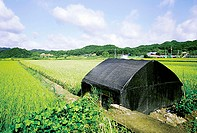 typical rural landscapes, scenery in Korea