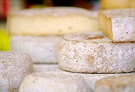 Rounds of varied french cheeses