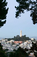 View of Coit Tower, San Francisco. California, USA
