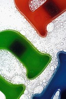 Close-up of plastic alphabets in a glass of water