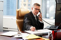 Businessman at desk using telephone