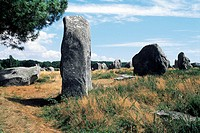 France, Brittany, Carnac, menhirs