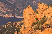 France, Corsica, The Calanches of Piana (thumbnail)