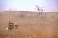 Australia, Northern territories, biker-farmer near Alice Springs