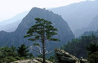 South Korea, Sorak mountains