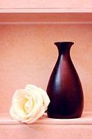 white rose with a vase