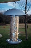 Triple-Tube-Bird-Feeder-with-Squirrel-Baffle,-Illinois
