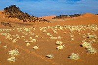 Desert, Libya
