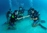 Scuba instructor shaking hands with successful student. Utila. Honduras
