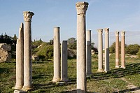 Columns from the ancient Asclepius Temple, medicine god. Carthage. Tunisia
