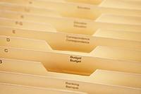 Manila file folders