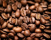 Coffee beans (filling the picture)
