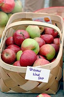 Stayman Winesap apples for sale at apple festival in Ellijay north Georgia fresh picked