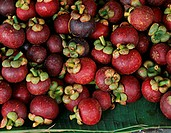 Mangosteens on green leaves